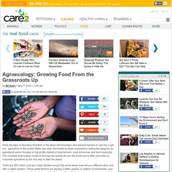 Agroecology Growing Food From the Grassroots Up
