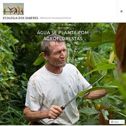 Água se planta com agroflorestas – Ecologia dos Saberes