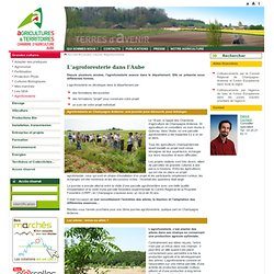 Autres informations pearltrees - Chambre agriculture aube ...