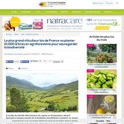 Le plus grand viticulteur bio de France va planter 10.000 arbres en agroforesterie pour sauvegarder la biodiversité