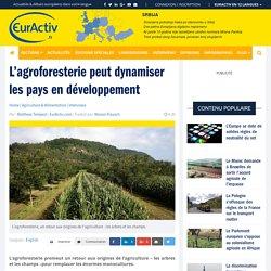 L'agroforesterie peut dynamiser les pays en développement – EurActiv.fr