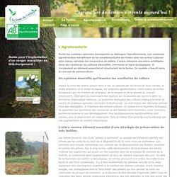 la ferme du colibri, légumes bio à Le Thor, agroforesterie, vergers maraichers