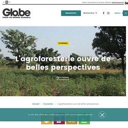 L'agroforesterie ouvre de belles perspectives (Glo.be - novembre 2018)