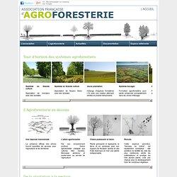 photothèque agroforestière - Association Française d'agroforesterie
