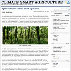 UCANR 16/10/19 Agroforestry and Climate Smart Agriculture