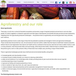 Agroforestry and our role