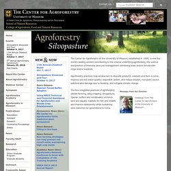 The Center for Agroforestry at the University of Missouri
