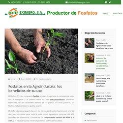 □ Fosfato en la Agroindustria: los beneficios de su uso