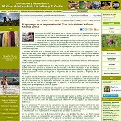 El agronegocio es responsable del 70% de la deforestación en América Latina