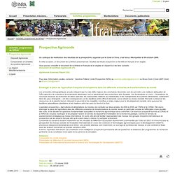 GIP Initiative Française pour la recherche Agronomique Internationale - Prospective Agrimonde