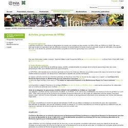 GIP Initiative Française pour la recherche Agronomique Internationale - Activités, programmes de l'IFRAI