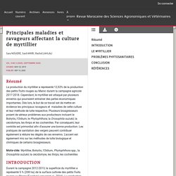 AGRIMAROC 15/09/20 Principales maladies et ravageurs affectant la culture de myrtillier