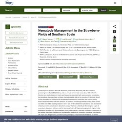 AGRONOMY 21/05/19 Nematode Management in the Strawberry Fields of Southern Spain