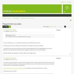 Consulter le sujet - Plaqueminier (ou kaki)