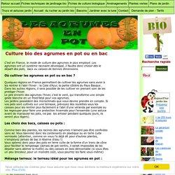 agrumes culture en bac ou pot: entretien des agrumes en pot ou en bac