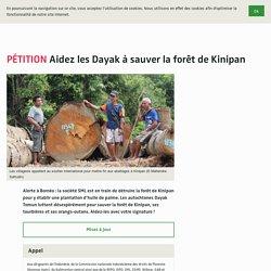 Aidez les Dayak à sauver la forêt de Kinipan