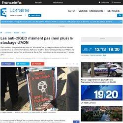 Les anti-CIGEO n'aiment pas (non plus) le stockage d'ADN - France 3 Lorraine