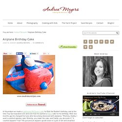 Airplane Birthday Cake « Andrea Meyers