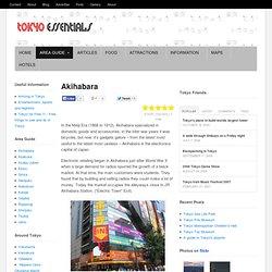Tokyo Tourist Guide