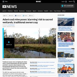 Adani coal mine poses 'alarming' risk to sacred wetlands, traditional owners say