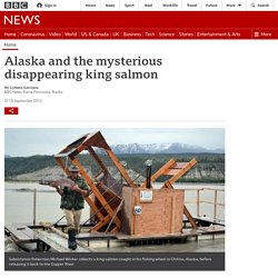 Alaska and the mysterious disappearing king salmon