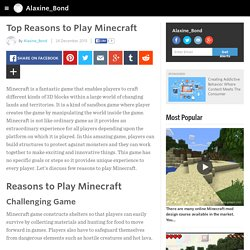 Top Reasons to Play Minecraft