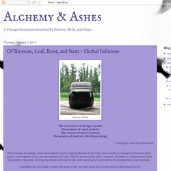 Alchemy & Ashes: Of Blossom, Leaf, Root, and Stem ~ Herbal Infusions