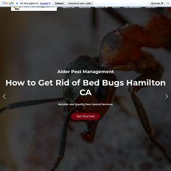 Pest Control Services Hamilton CA