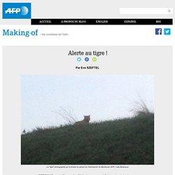 Alerte au tigre !