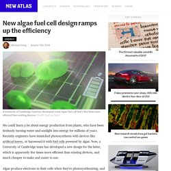 New algae fuel cell design ramps up the efficiency