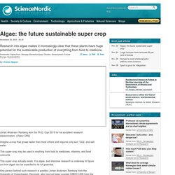 Algae: the future sustainable super crop