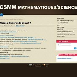Algodoo (flotter de la brique) ? - CSMM mathématiques/sciences