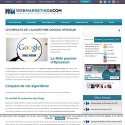 Les impacts de l'algorithme Google Opossum sur le Référencement