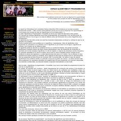 IcosaWEB : Algorithmes et Programmation