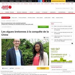 Les algues bretonnes à la conquête de la Chine