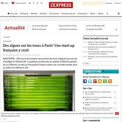 Des algues sur les tours à Paris' Une start-up française y croit