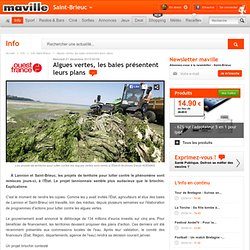 Saint-Brieuc.maville.com Algues vertes, les baies présentent leurs plans