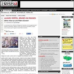TERRA 13/09/13 Algues vertes, brunes ou rouges