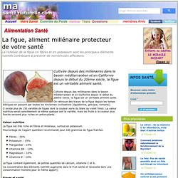 La figue, aliment millénaire protecteur de votre santé