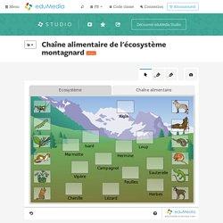 Jeu : Chaîne alimentaire de l'écosystème montagnard