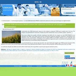 CRIIGEN 18/01/17 Le maïs OGM alimentaire NK603 contient des substances actives qui ont échappé à la réglementation