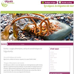 Algues Armorique - Kombu : usages alimentaires, vertus et caractéristiques de l'algue kombu