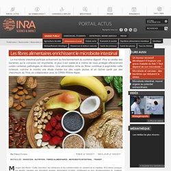 Fibres alimentaires et microbiote intestinal