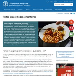 FAO - Pertes et gaspillages alimentaires.