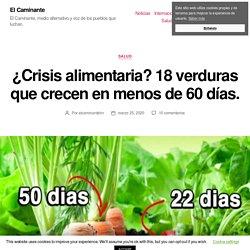¿Crisis alimentaria? 18 verduras que crecen en menos de 60 días. - El Caminante