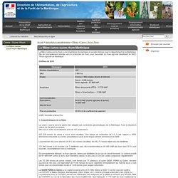 La filière canne-sucre-rhum Martinique - Direction de l'Alimentation, de l'Agriculture et de la Forêt de la Martinique