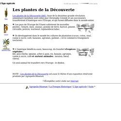 Histoire de l'alimentation & de l'agriculture - 8. Les plantes de la Découverte