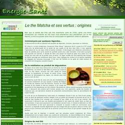 Le the Matcha et ses vertus : origines