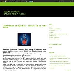Alimentation et digestion : acteurs clé de notre santé. - sante-bienetre