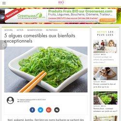 Alimentation : découvrez cinq algues aux bienfaits exceptionnels